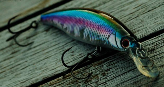 Lure Heaven Store Advert